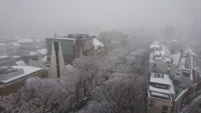 1/22(月)大雪のため、本日の診療は17時で終了させていただきます。