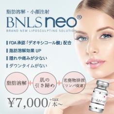 BNLSneo2019年6月